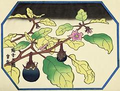 Eggplant (Japanese Flower and Bird Art) Tags: flower art japan modern print japanese eggplant woodblock solanum solanaceae melongena tokuriki tomikichiro readercollection