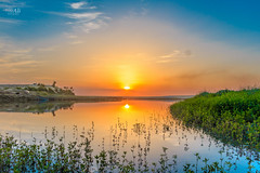 sunset (AliStudioZPR) Tags: pakistan sunset nature sunrise canon naked golden punjab goldenhour southpunjab canon70d