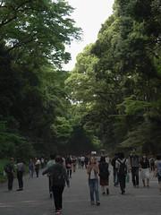 R0010917 (koyaman3422) Tags: harajuku ricoh a12  gxr