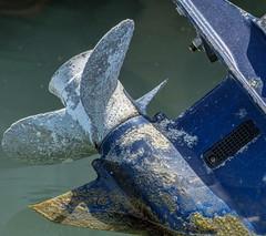 Worn (shottwokill) Tags: california texture screw nikon machine motor nikkor propeller blades prop balboaisland 200500