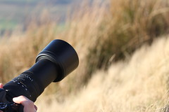 IMG_6599 (Jgalea14) Tags: camera landscape nikon dslr lense sgima nikond3300 d3300