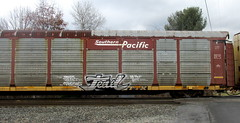 tead (timetomakethepasta) Tags: train graffiti pacific southern wa ra tst freight fact droids autorack tead