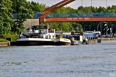 019_BB_Falderntor (Possy 2016) Tags: natur kanal landschaft sigma105mm datteln bunkerboot sigma105mmf28makro tamron16300mmf3563macro tamron16300mm 45711datteln falderntor