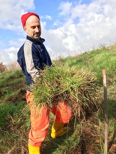 Carlo Cini alla fabbrica del suolo (the soil factory). Spettacolari zolle di materiale organico creato dalle coperture vegetali