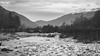 B&W-00680 (alessandro.polla) Tags: bridge blackandwhite bw italy mountains ice nature water river landscape woods iced woodbridge tentino