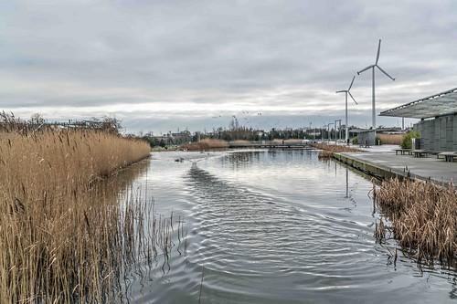 Wind Powered Public Park In Clongriffin Dublin [Father Collins Park]-110960