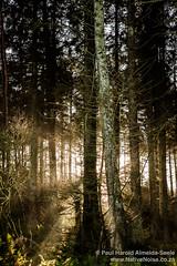 Beecraigs Country Park, Scotland