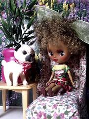 Blythe-a-Day January #8 Tiny: Lola & Mr. Puggsly
