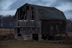 w e a t h e r e d (Chris Robinson Photography) Tags: old travel winter cold clouds barn outdoors cows farmland structure weathered stress livestock middleofnowhere 2016 sigma70200f28 fallingappart farmstructure
