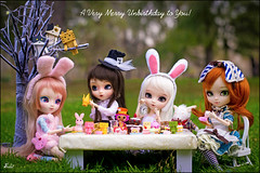 A Very Merry Unbirthday to You! (Suki) Tags: birthday food cute rabbit bunny cat desk sweet outdoor kitty cupcake pullip wonderland pullips teaparty alicewonderland pullipcustom pullipblanche classicalalice classicalwhiterabbit