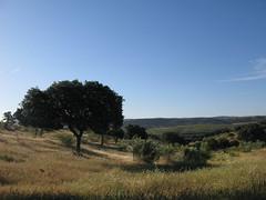 Blick ber die Landschaft (pilgerbilder) Tags: pilgern pilgerfahrt pilgertagebuch vadellaplata grimaldocarcaboso
