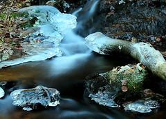 XONTHEROCKS-RIT2 260 (papamillo) Tags: winter italy ice nikon rivers inverno lombardia varese freddo ghiaccio torrente prealpi allaperto 21050 varesotto cavagnano cuassoalmonte cavallizza coolpixp520 formedighiaccio parcodelle5vette papamillo