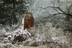 (SouthernHippie) Tags: trees winter chimney white snow brick abandoned farmhouse rural forest al woods fireplace farm south country rustic alabama ruin southern forgotten americana wilderness abandonment ruraldecay countryroad rundown fadingamerica