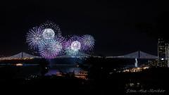 View from Coit Tower - Bay Lights Re-Lighting and Super Bowl City Fireworks Show - 013016 - 05 (Stan-the-Rocker) Tags: sanfrancisco sony coittower northbeach embarcadero ferrybuilding telegraphhill nex sanfranciscooaklandbaybridge sfobb sb50 baylights sel1855 stantherocker