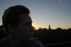 Outline (ethanfeck) Tags: trees sunset portrait rooftops outdoor