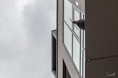 Taube mit Stock (Jan Čmárik) Tags: urban canon eos ast pigeon taube 6d cmrk cmarik