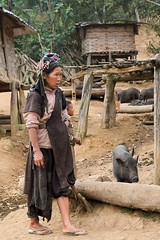 Yelling at the pigs (Laura Jacobsen) Tags: laos hilltribe akha phongsaly phongsali akhanoukouy