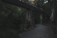 Beneath the Viaduct (Laszlo Bilki-Time Poor) Tags: longexposure landscape nikon viaduct explore adelaide southaustralia industriallandscape laszlobilki