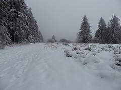 IMG_8629 (Bike and hiker) Tags: winter mist hiver sneeuw neige venn hoge hautes fagnes venen hohes botrange neur bayehon low