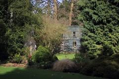 Blue Hut - Arboretum Kalmthout (stephenmid) Tags: belgium kalmthout