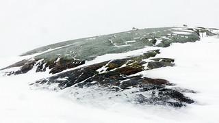 Mullbänken islet (Inkoo outer achipelago, 20160124)