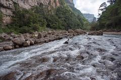 _DSC2540 (Jorge De Silva R) Tags: nature rio de la photo adventure venta caon chiapasmexico fotografiadenaturaleza