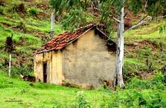 S uma casinha (Sophie Carrire) Tags: abandono casinha
