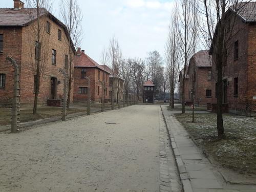 """Auschwitz-Birkenau <a style=""""margin-left:10px; font-size:0.8em;"""" href=""""http://www.flickr.com/photos/141744890@N04/25723751033/"""" target=""""_blank"""">@flickr</a>"""
