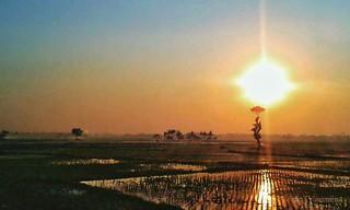 Moment ini takkan pernah terganti saat dimana sang surya menyapa negeri yang elok, kaya akan sumber alamnya yang masih lestari.. #repost Photo by : @ mukhtar_sidayu #sunrise #semangatpagi #nature #pagi #Banten #serang #kotaserang #Indonesia