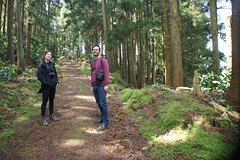 ch gorreana (Roberta Caldas) Tags: tea hiking azores teaplantation ch somiguel gorreana