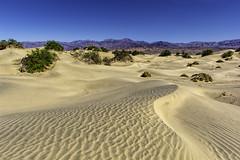 Mesquite Flat Dune, Death Valley National Park (punahou77) Tags: california park sky nature landscape nationalpark sand desert deathvalley sanddune deathvalleynationalpark stevejordan mesquiteflat mesquiteflatdunes mesquiteflatdune nikond7100 punahou77