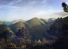 Alta Valle d'Esino (michaela.meerkatz) Tags: italy green trekking italia hiking hipstamatic