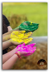 The Colorful Celebration of Holi! (KS Photography!) Tags: pink people india playing abstract green art love colors beautiful yellow festival closeup kids rural outdoors happy photography spring hands nikon colorful paint colours village child hand artistic bokeh vibrant background traditional religion joy young culture lifestyle happiness depthoffield celebration event together messy wrist tradition nikkor hindu hinduism holi occasion nikondigital enjoyment isolated newdelhi joyous ethnicity colorsofspring 80400mm photogrpahy indianculture kair festivalofcolors gulal photoborder holicolours indianethnicity powderedcolor