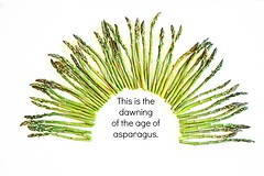 This is the dawning of the age of asparagus.... (katerha) Tags: vegetable asparagus pun sometimessavory ageofasparagus