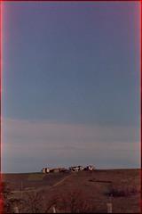 02_Rollei_CN200_FA_200_4_ais_PGF (Lszl K.) Tags: color 2004 by rollei nikon gates films milano dev epson nikkor six fa ais v550 sgf 200mm pavese c41 colorfilm colornegative pfg oltrep cn200 sixgatesfilms