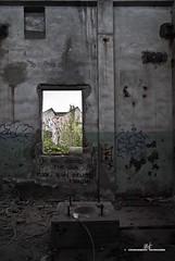 (max.fontanelli) Tags: old muro abandoned window wall buildings graffiti grigio edificio gray emilia finestra murales destroyed vecchio reggio distrutto abbandonato officine capannone meccaniche reggiane