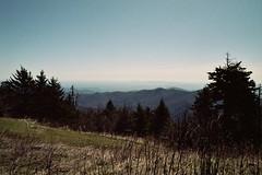 untitled (inafreeland) Tags: trees mountains nature landscape nc scenery northcarolina appalachia blueridgeparkway kodakgold200 canoneoselan7e