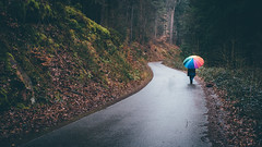 Walking in the Rain (sfp - sebastian fischer photography) Tags: road wet rain forest umbrella landscape rainbow colorful colourful landschaft wald regen nas regenbogen waldweg regenschirm pflzerwald feucht strase baddrkheim humanelement neustadtanderweinstrase minoltamdrokkor45mmf2 waldstrase sonya7s