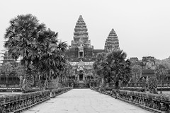 The Angkor Wat without Tourists (baddoguy) Tags: sky blackandwhite horizontal architecture outdoors photography ancient asia cambodia southeastasia khmer sunny nopeople angkorwat unescoworldheritagesite palmtree stonewall copyspace siemreap angkor ancientcivilization clearsky unusualangle traveldestinations famousplace pedestrianwalkway buildingexterior internationallandmark artscultureandentertainment siemreapprovince cambodianculture