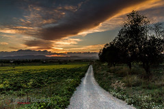 Path to sunset (Natx33) Tags: sunset sky sun sol colors sunshine silhouette clouds canon contraluz landscape eos lights solar colorful colours cloudy dusk sunny paisaje colores cielo nubes 7d siluetas backlighting soleado alairelibre