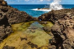 Olivine Pools North Shore Maui (r1aviator) Tags: hawaii maui pacificocean tidepools olivinepools kahakuloa
