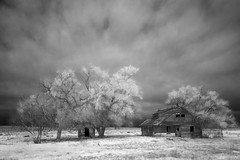 i sit alone (eDDie_TK) Tags: abandoned ir colorado co infrared yumacounty yumacountycolorado