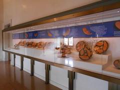 la teca dei piatti di pesce, Museo Archeologico Nazionale,  Ferrara (Pivari.com) Tags: ferrara museoarcheologiconazionale latecadeipiattidipesce
