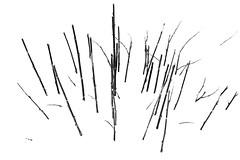 untitled-2838 (hasvewo) Tags: str speiling strokkenes strokkenesbru
