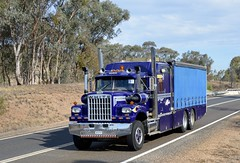 White (quarterdeck888) Tags: white nikon flickr transport frosty semi lorry trucks express logistics 4000 bigrig overtheroad haulage quarterdeck vintagetrucks oldtrucks class8 heavyvehicle truckshow cartage roadtransport humehighway heavyhaulage highway31 truckies d7100 highwaytrucks aussietrucks australiantrucks historictrucks expressfreight australiantransport freightmanagement truckdisplay jerilderietruckphotos jerilderietrucks outbacktrucks crawlingthehume truckexpo quarterdeckphotos oldhighwaytrucks australianinterstatetrucks cralinthehume crawlingthehume2016