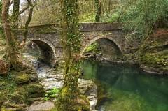 17th century bridge over the River Tavy, Devon (Baz Richardson (trying to catch up!)) Tags: woods devon rivers rivertavy westdevon denhambridge 17thcenturybridges gradeiilistedbridges