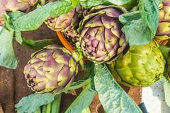 20160420 Provence, France 02472 (R H Kamen) Tags: food france vegetables cassis artichokes foodmarket bouchesdurhne bouchesdurhone provencealpescotedazur provencealpesctedazur rhkamen