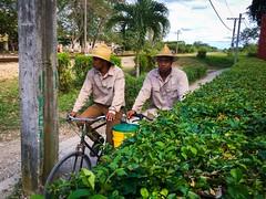 Santa Clara. Cuba (H.L.Tam) Tags: cuba documentary santaclara cuban iphone photodocumentary cubanfaces iphone6s