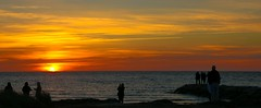 Sunset Worshippers (SueZinVT) Tags: sunset capecod silhouettes rockharbor canon70d suezamecnik