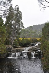 small cascade near Cradle Mtn. Lodge (davidparratt) Tags: waterfall tasmania cradlemountainlakestclairnp